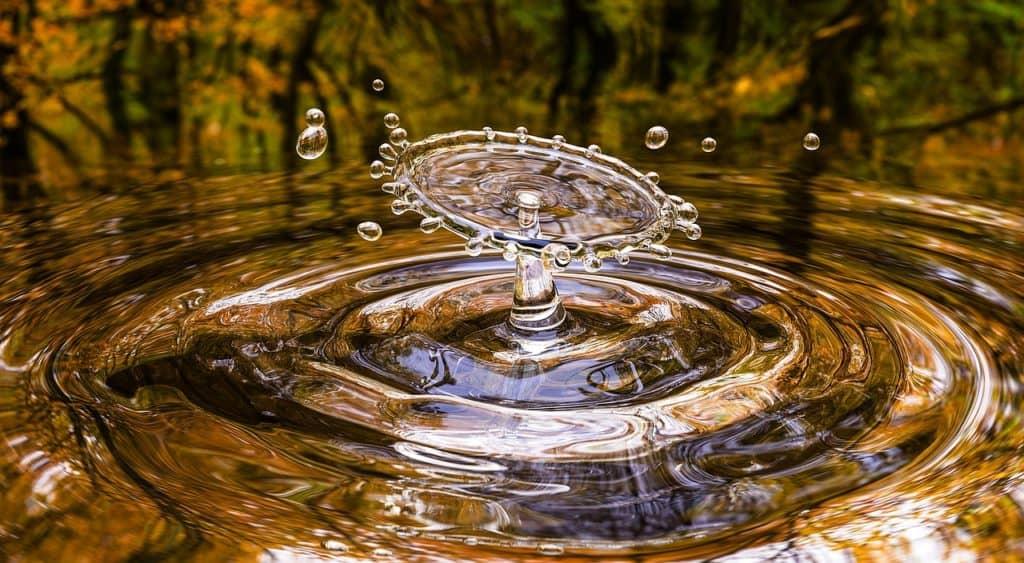 Specchio d'acqua limpida che riflette la vegetazione circostante dai colori autunnali dove si sono formati dei cerchi e uno zampillo circolare.